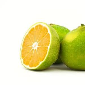 ulei esential de mandarin verde bio organic pur