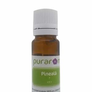 Ulei esential de Pineala